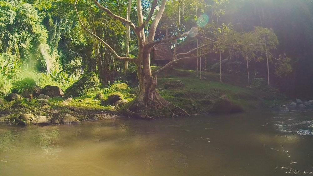 river 2.jpg