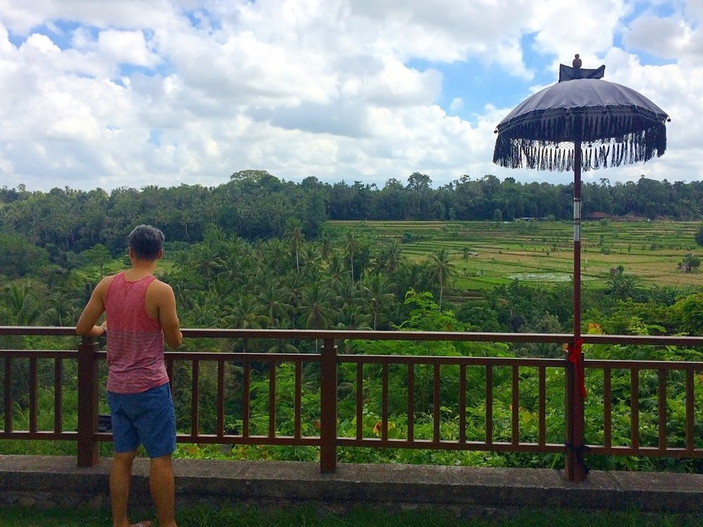 View from our resort, Samaya Ubud.