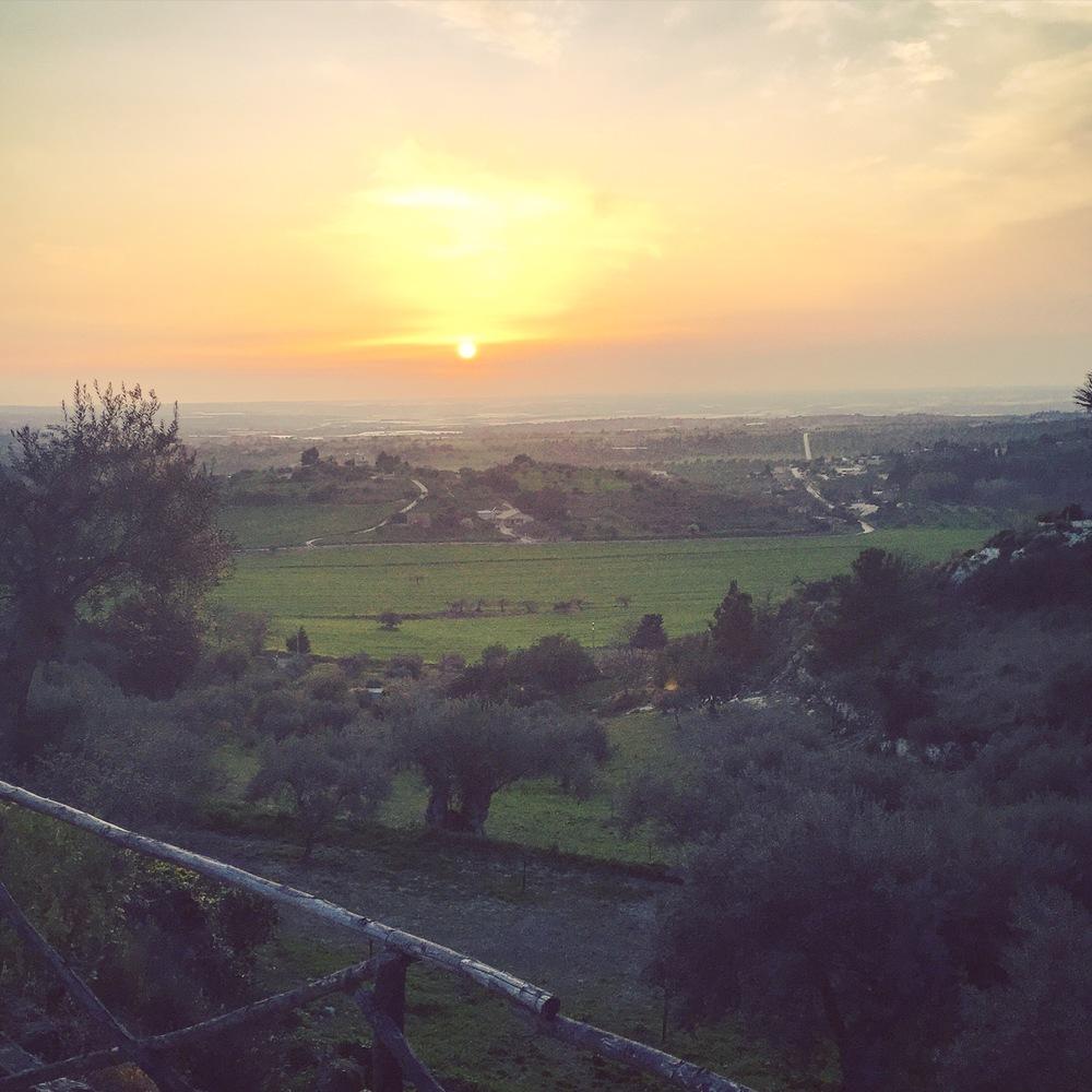 Image WFT, Pianogrillo Farm