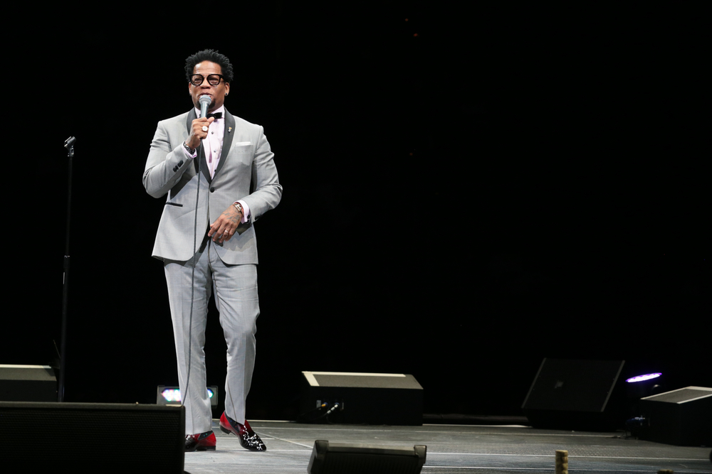 "D.L. Hughley Prince ""Controversy"""
