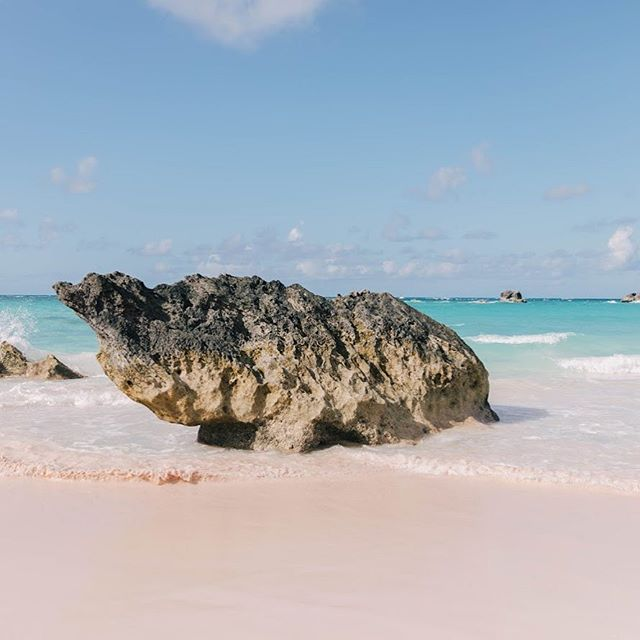 Beach walks and collecting pink sand 💕 • • • • • #sheisnotlost #wearetravelgirls #ladiesgoneglobal #darlingescapes #femmetravel #girlslovetravel #sidewalkerdaily #thetravelwomen #globelletravels #dametraveler #girlsborntotravel #travellushes #girlsmeetglobe #girlsvsglobe #sheexplores #radgirlslife #traveletting #timeoutsociety #myfavtourlina #lifewelltravelled #backpackerstory #takemethere #revistaviajar #vamospraonde #letsgoeverywhere #girlswhotravel #bermuda #travelgirl