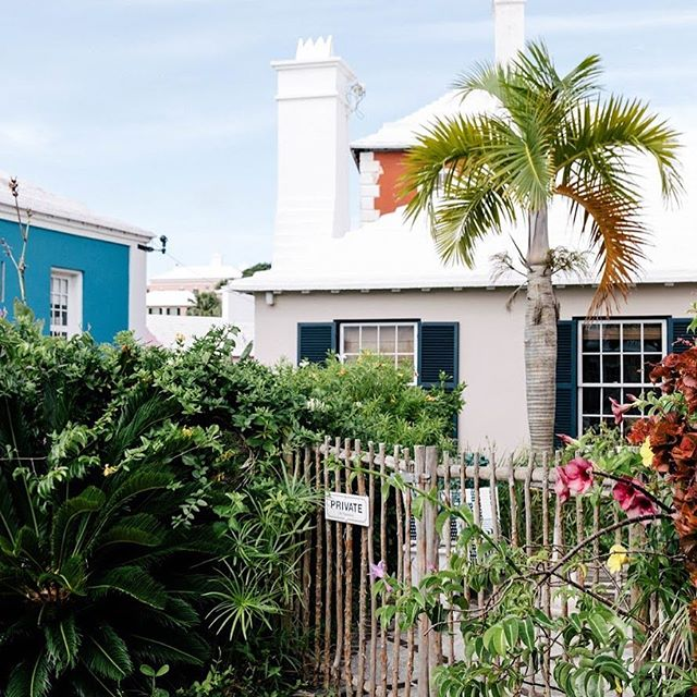 I loved these beautiful homes hidden behind the trees and flowers in St. George's town 💙💙 • • • • • #dametraveler #unlimitedparadise #vacationwolf #forahappymoment #planetdiscovery #darlingescapes #wearetravelgirls #mytinyatlas #theprettycities #exploringtheglobe #sheisnotlost #theglobewanderer #flashesofdelight #visualoflife #roamtheplanet #ladiesgoneglobal #traveldeeper #globelletravels #sidewalkerdaily #girlslovetravel #travelstoke #openmyworld #tasteintravel #lonelyplanet #femmetravel #instapassport #bermuda #letsgoeverywhere #tlpicks #thetravelwomen