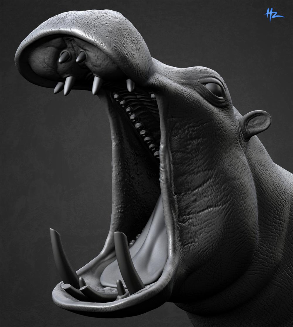 Hippohead.jpg