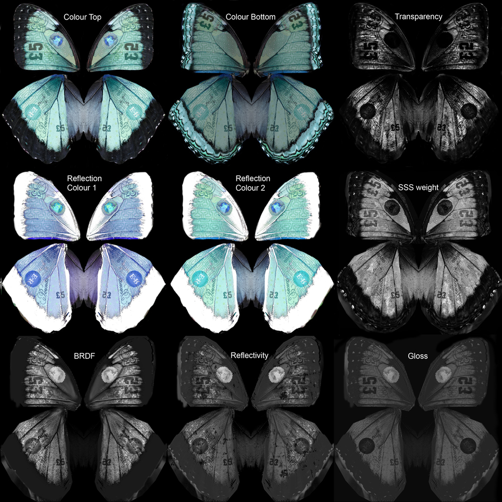 Various texture maps created for the shading of the butterfly wings