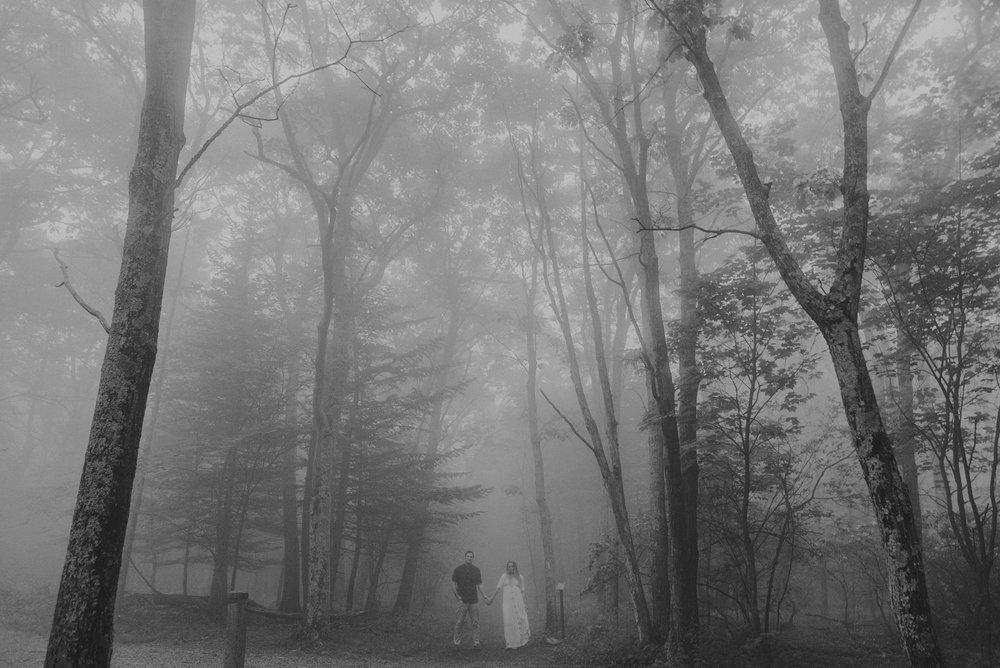 Shenandoah National Park Engagement Photographer (1 of 1)-4.jpg