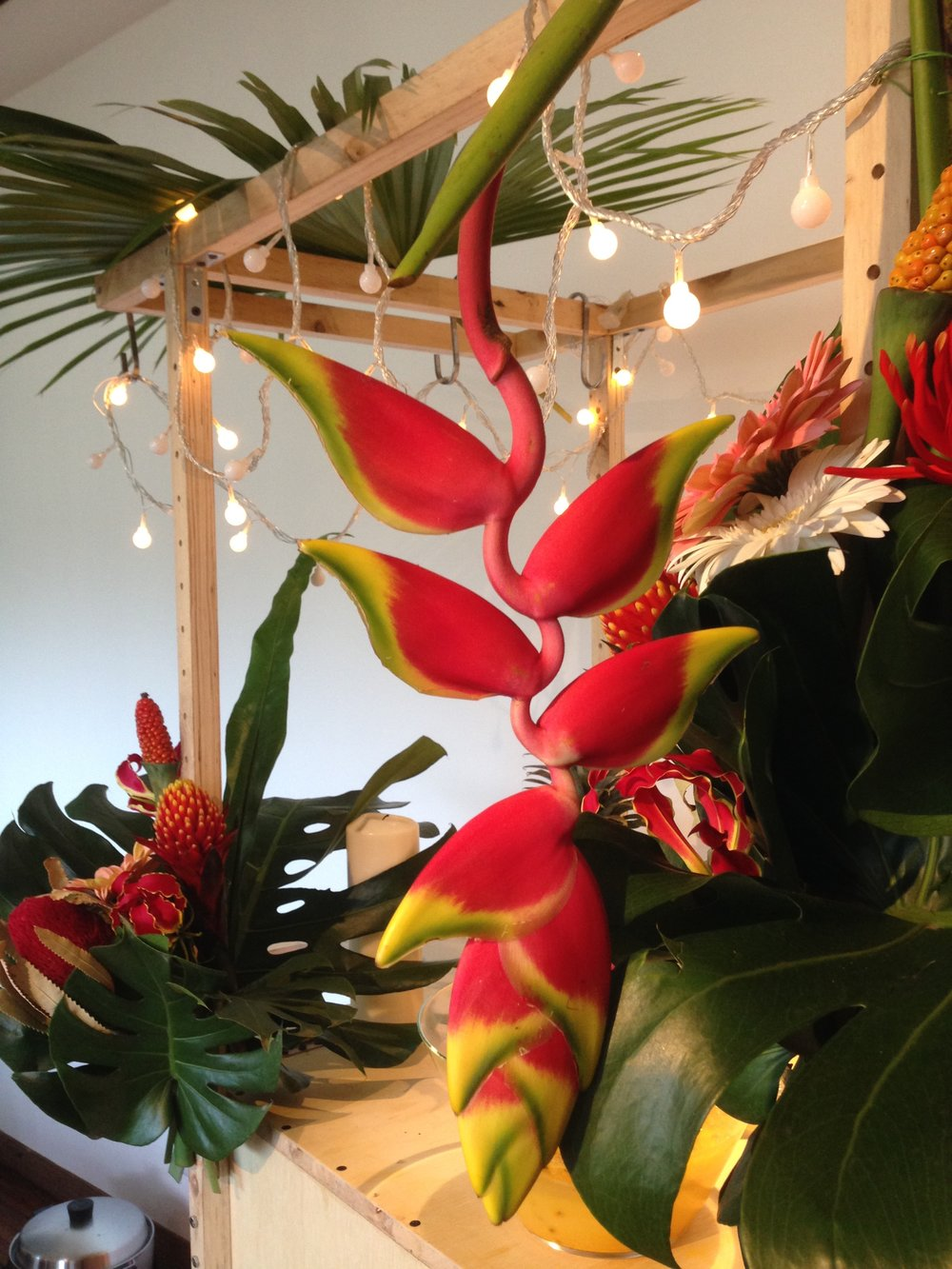 Tropical Party Decoration -