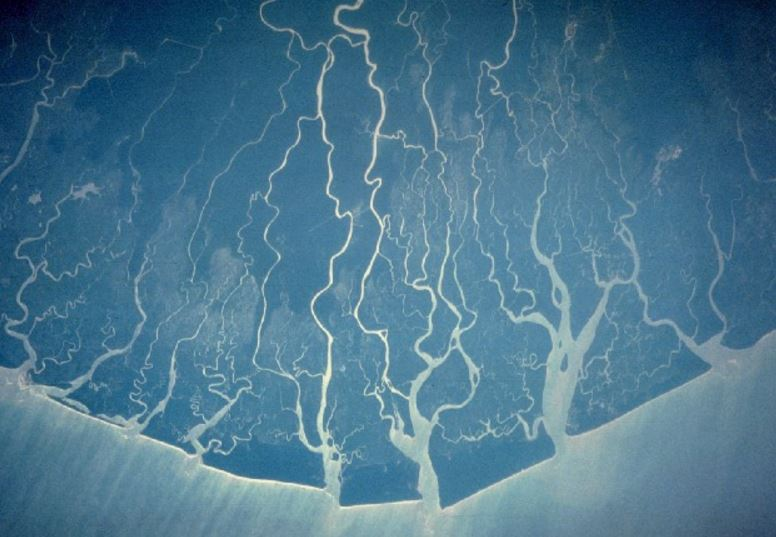 The Niger Delta as seen from space. Image: Wikipedia Commons.