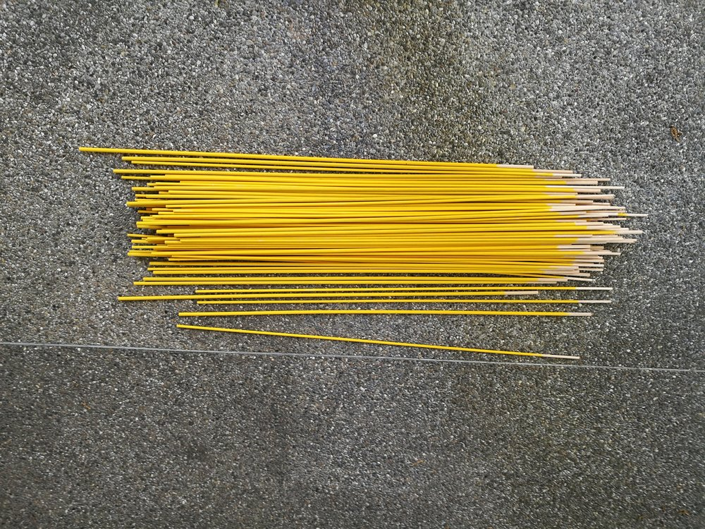 rosemary-niehaus-taraxacum-sticks.jpg