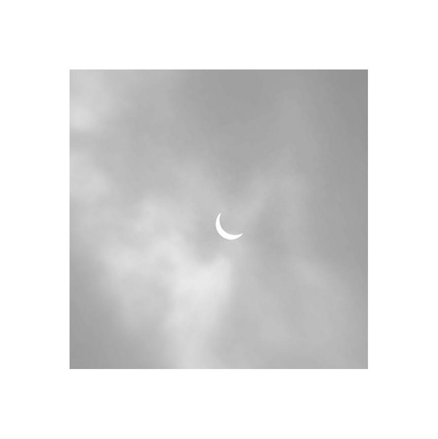 rosemary-niehaus-inthelightofthesunandmoon-eclipse.jpg