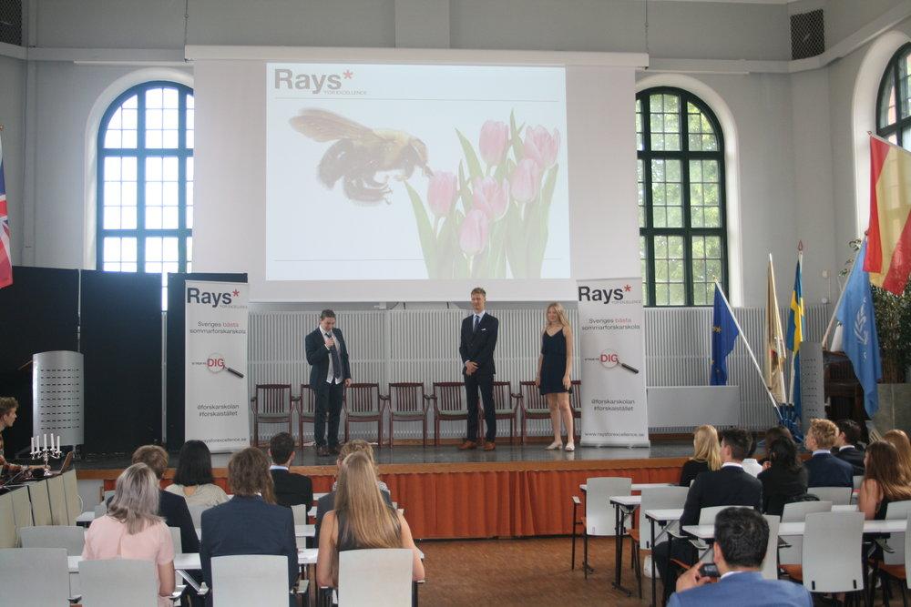 Alexandru, David och Ebba presenterar sitt miniprojekt där de undersökt vingfrekvensen hos bin.