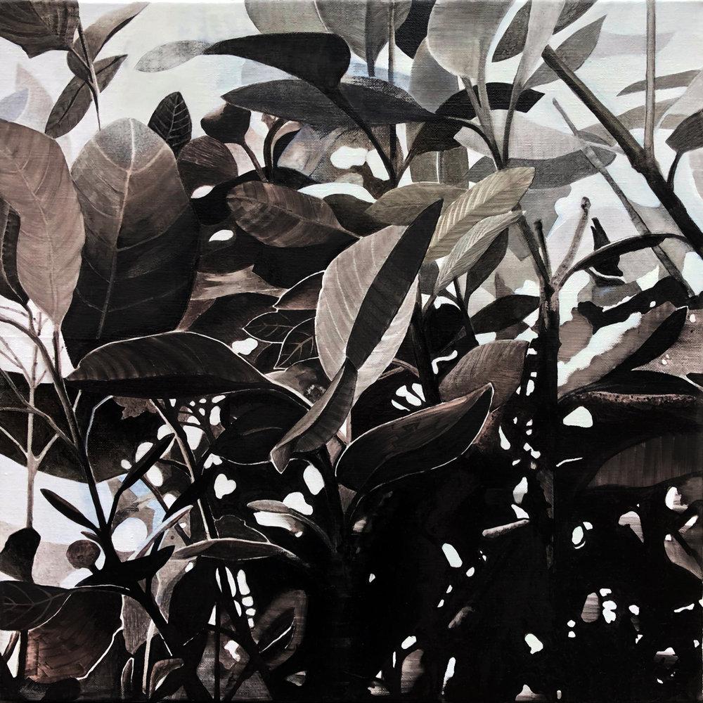 Foliage 2 2017 oil on linen 40 x40 cm