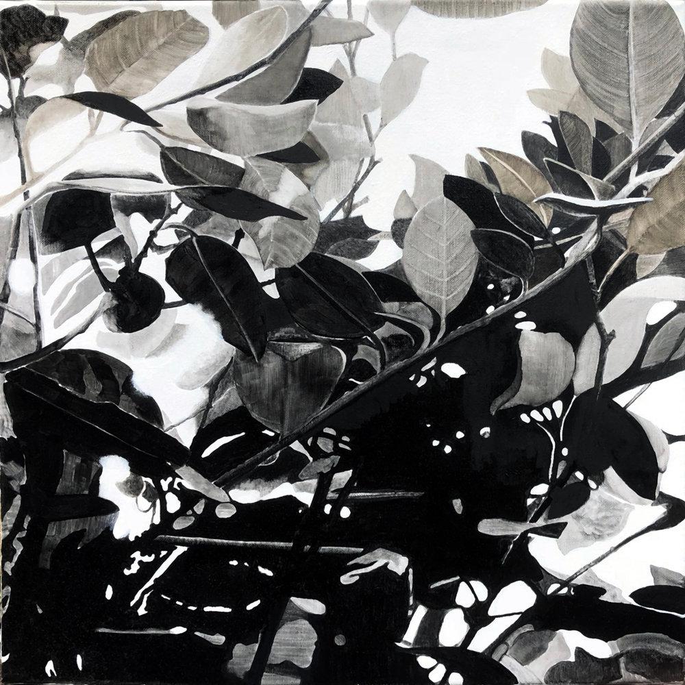 Foliage 3 2017 oil on linen 40 x40 cm
