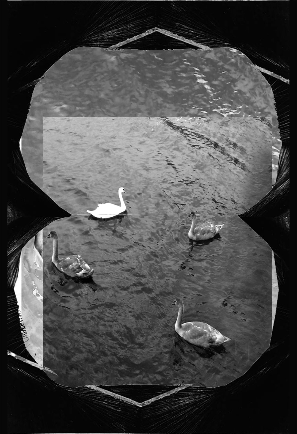 SWANS AND CAVE_1_63x43cm.jpg