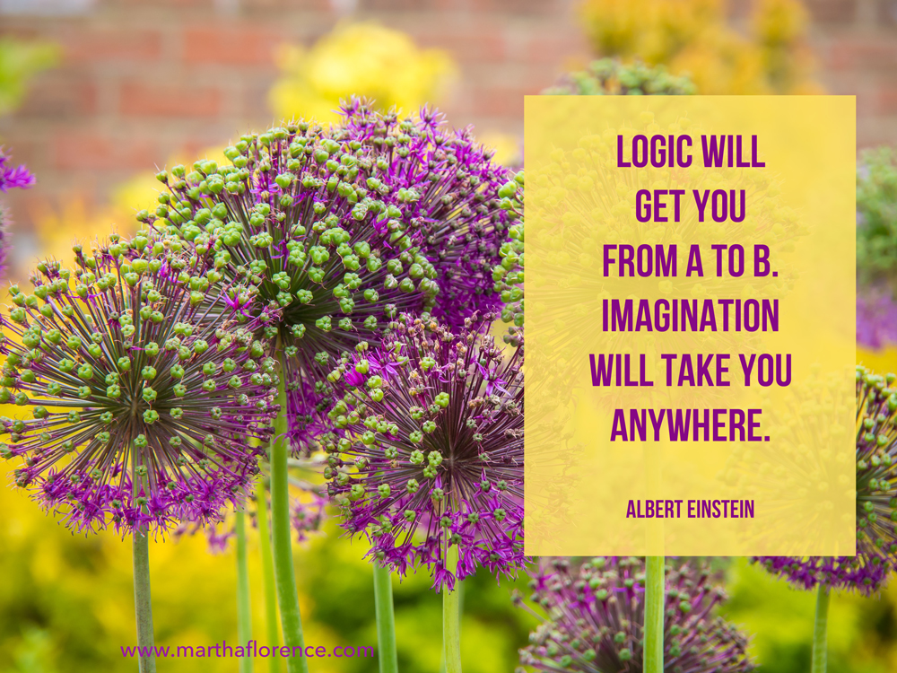logic-and-imagination