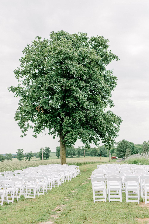 alli-and-josh-wedding-8.jpg