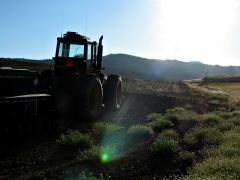 Lewis-tractor.jpg