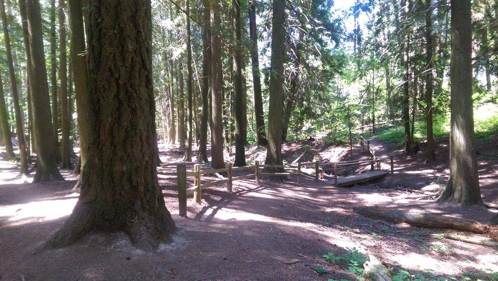 Idler's Rest Nature Preserve