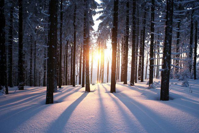 winter solstice hike palouse land trust