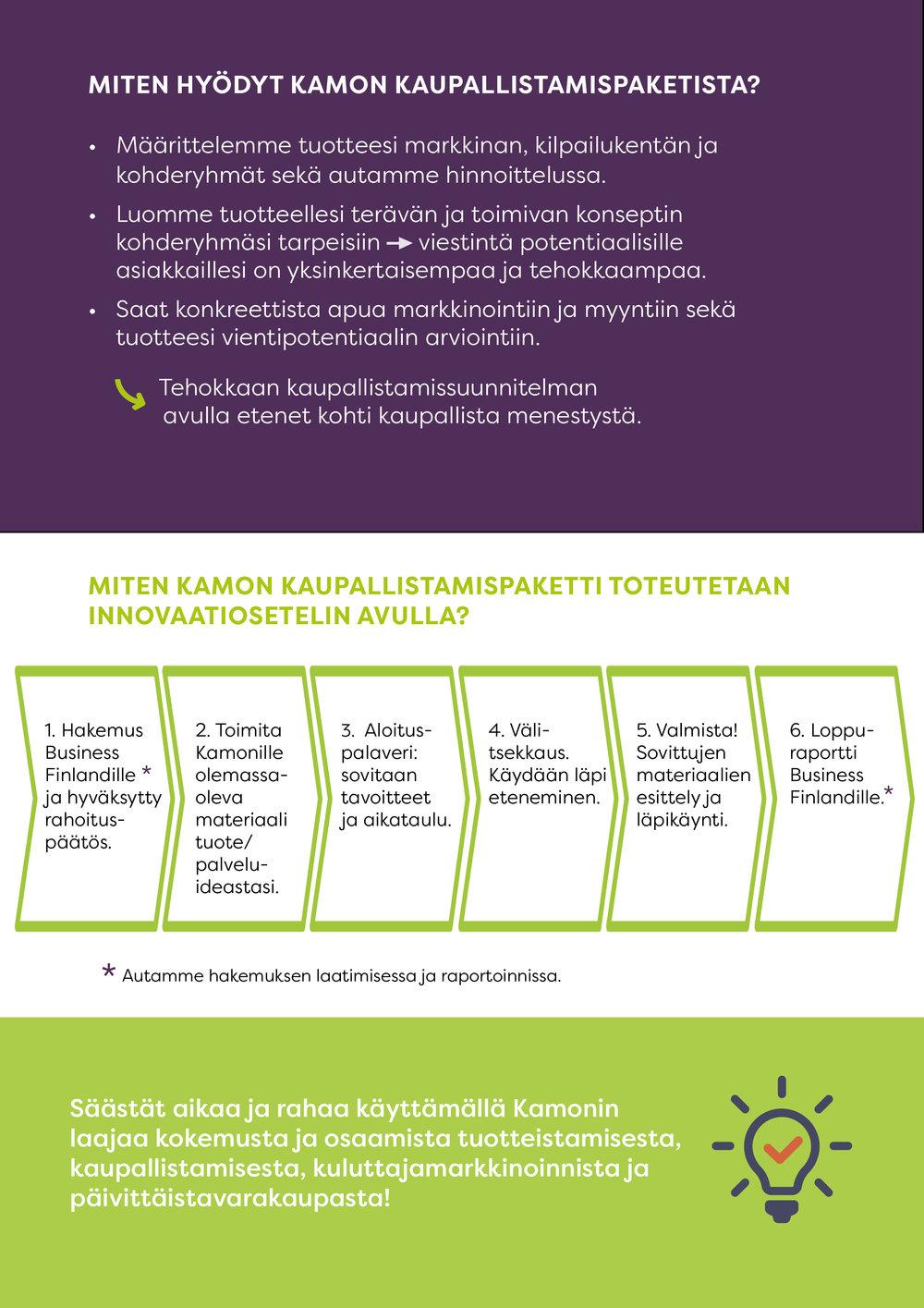 Innovaatioseteliesite kuvina sivu  2.jpg