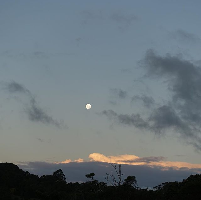 Almost full moon at Lune de Sang...worried that clouds may obscure tonite's blood moon eclipse...