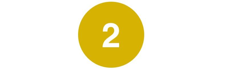 2_yellow'.jpg