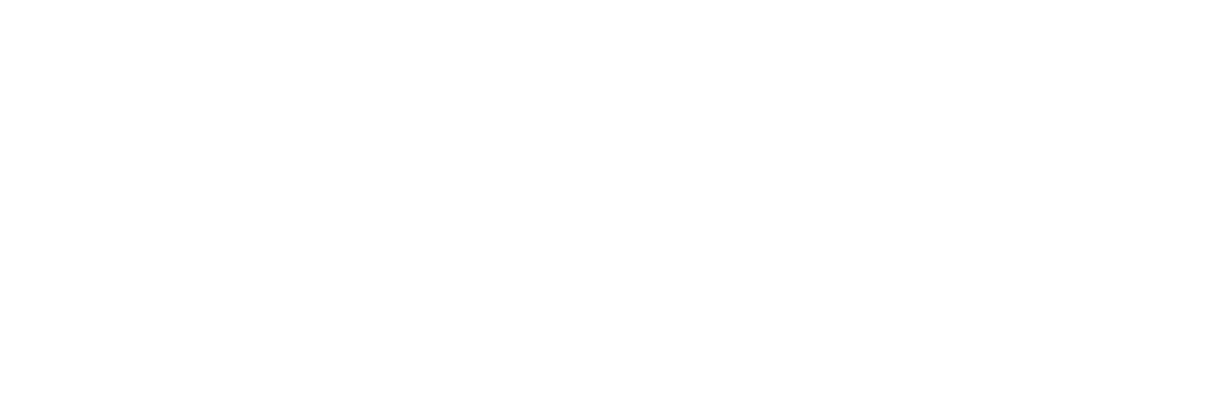 100% ELECTRONICA