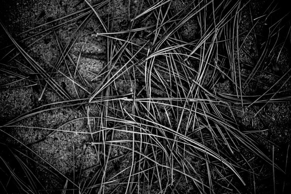 LookingDown-6.jpg