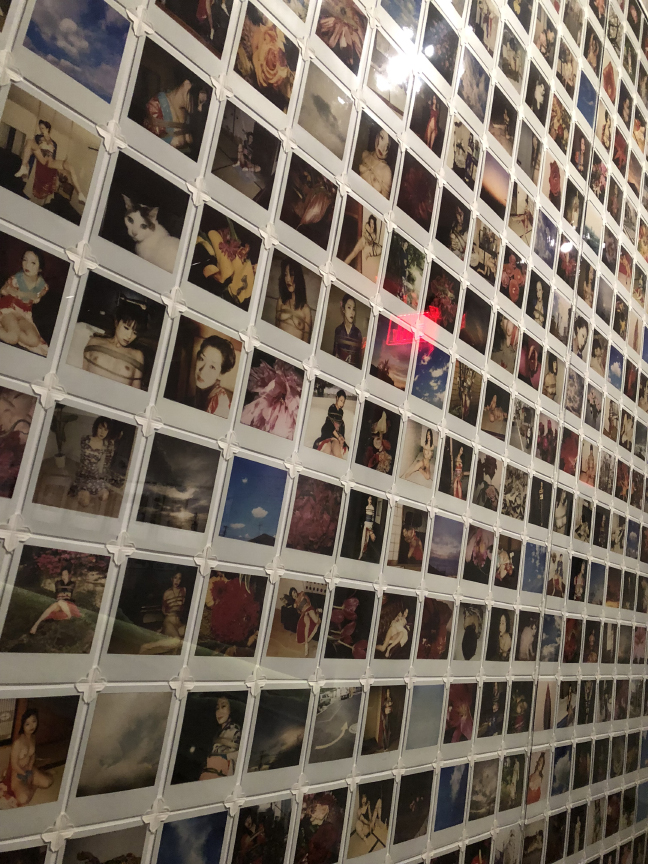 Wall of Araki Polaroids.
