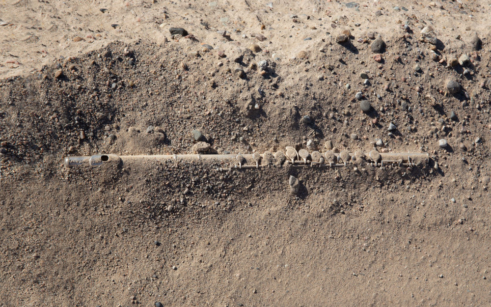 flute unearthed after windstorm; mesa del sol, albuquerque, new mexico 2018