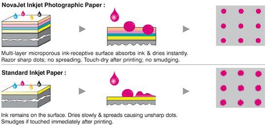 Dye Vs Pigment Diagram.jpg