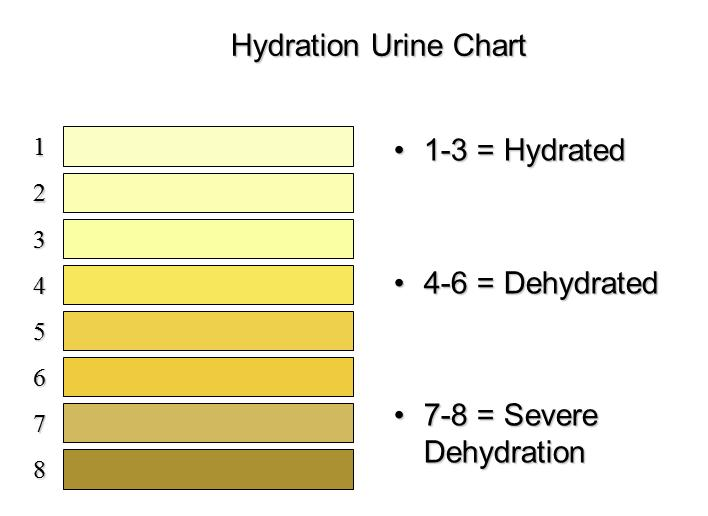 http://www.athletico.com/2012/08/07/hydrating-for-performance-and-health/