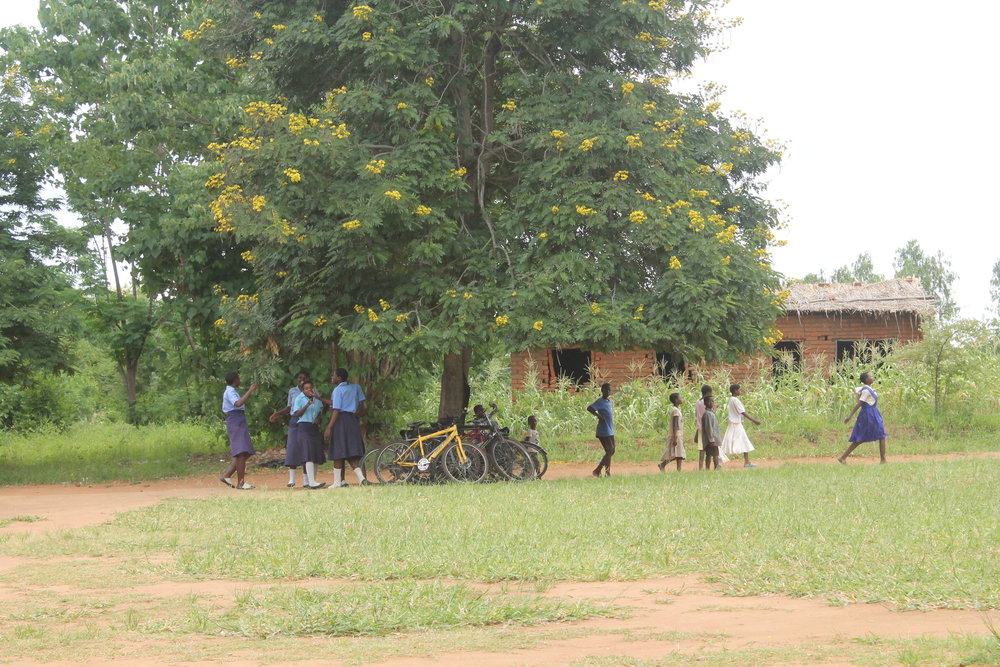 The Nsondole CDSS schoolyard is a place for many types of students and community members to pass through.
