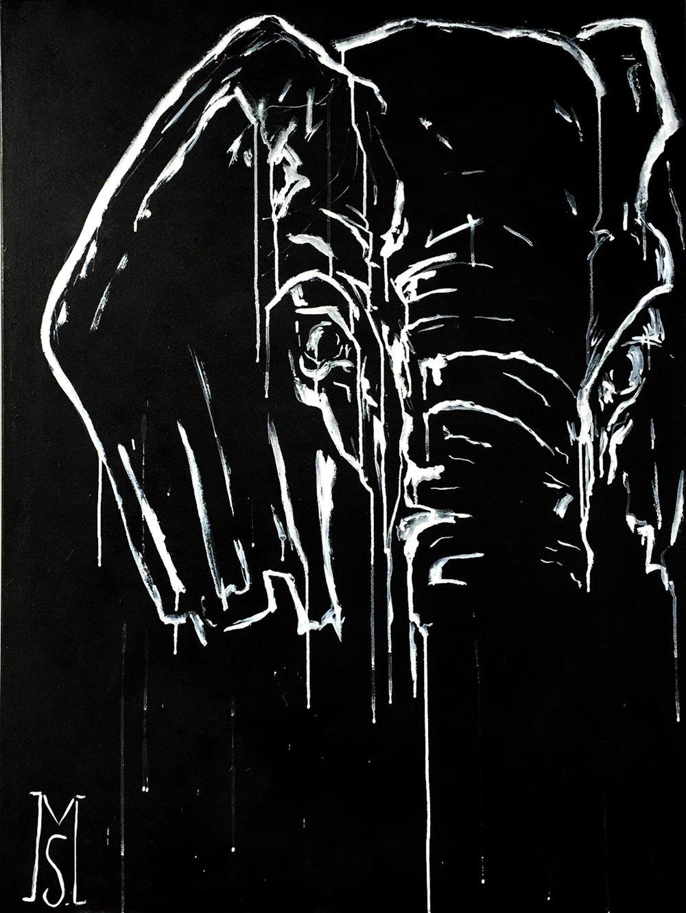 Elephant-in-Shadow.jpg
