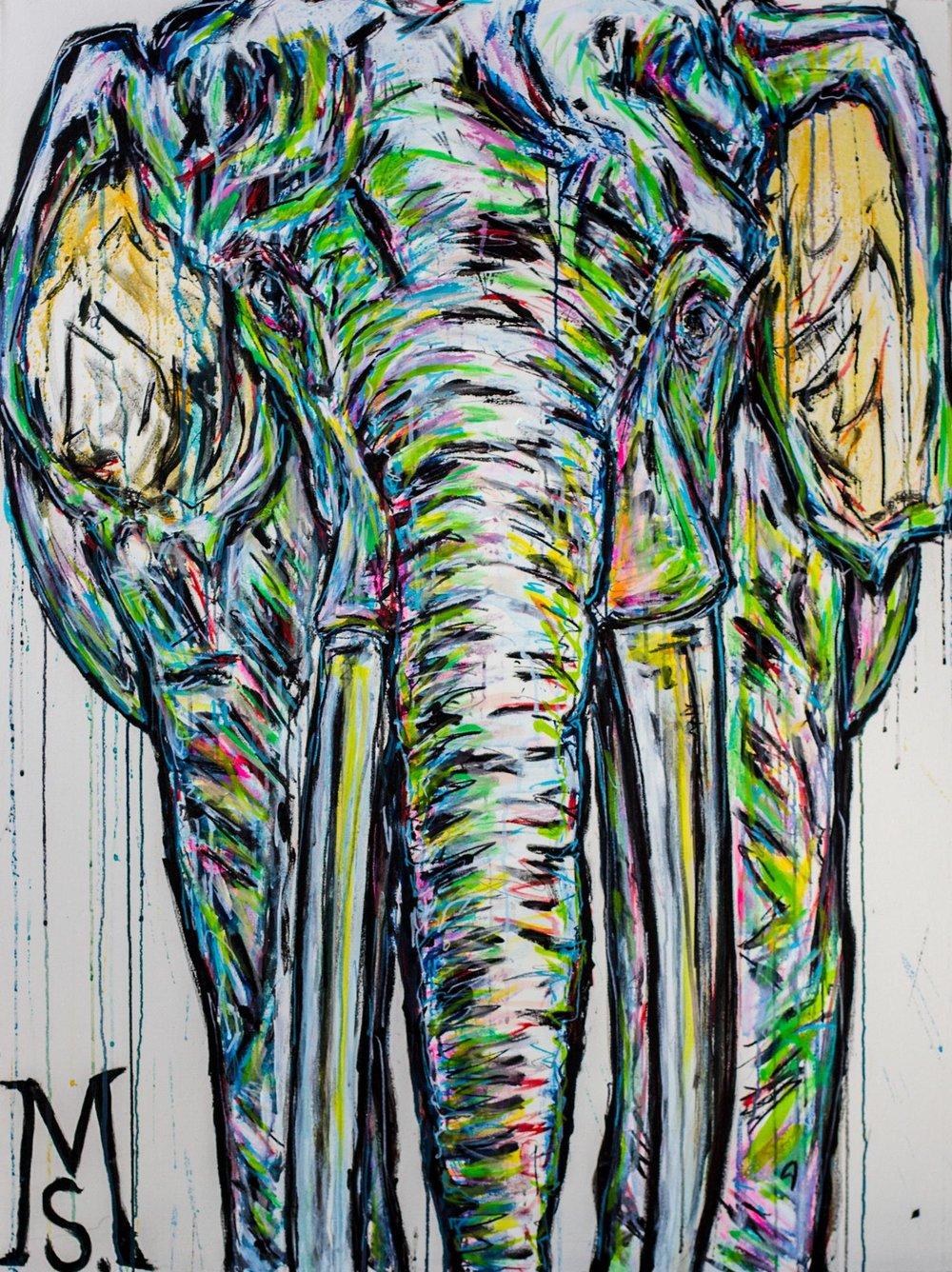 Jimmy-the-Elephant.jpg
