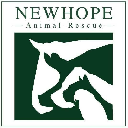 New Hope Animal Rescue - New Hope Animal Rescue is an Independent, non-destruct rescue dedicated to helping animals on death row and those with medical and or behavioural needs. We work with many other rescues and authorities to safeguard the welfare of animals and rehabilitate and rehome them properly.