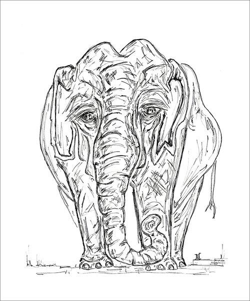 Quaker St. Cafe Elephant 24x20.jpg