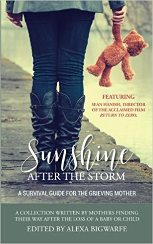 "Alexa's book ""Sunshine After The Storm."""