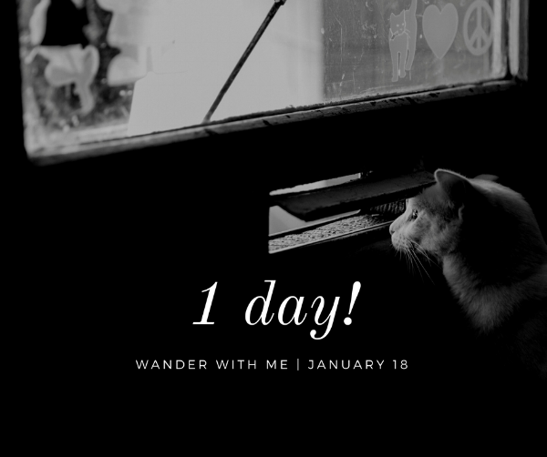 Wander With Me Countdown.png