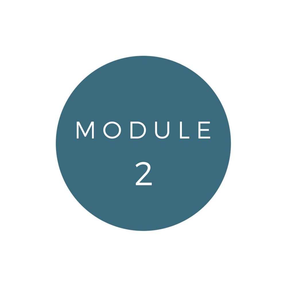 Copy of Copy of MODULE 2
