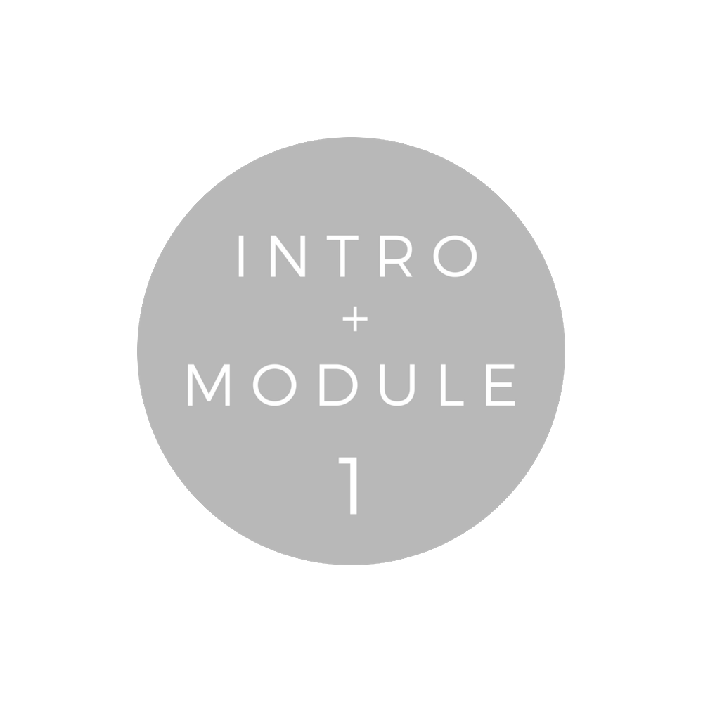 Copy of Copy of INTRO + MODULE 1