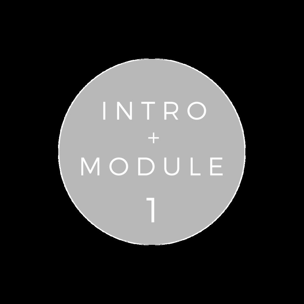 Copy of INTRO + MODULE 1