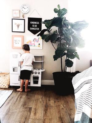 Allie_House_Hudson_Toy_Kitchen.jpg