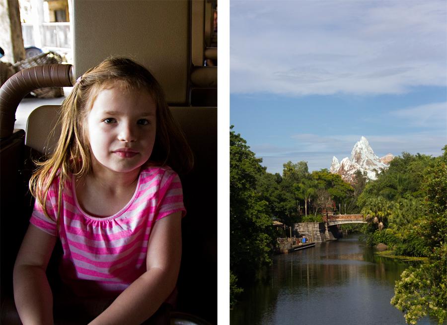 disney world vacation photographer / lifestyle family photographer / animal kingdom