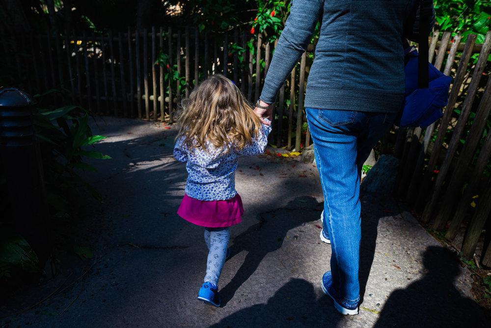 disney documentary photographer / disney family photographer / animal kingdom photography