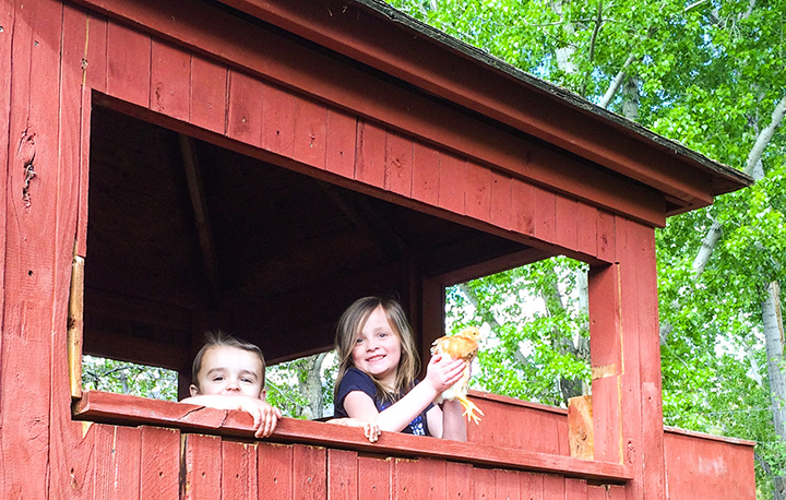 We went to my cousin Sean's house. He has a great little family and they recently purchased chickens. In this picture Abbey is with Ben (her second cousin once removed?) in a tree house holding a chicken. Abbey had so much fun with Ben.