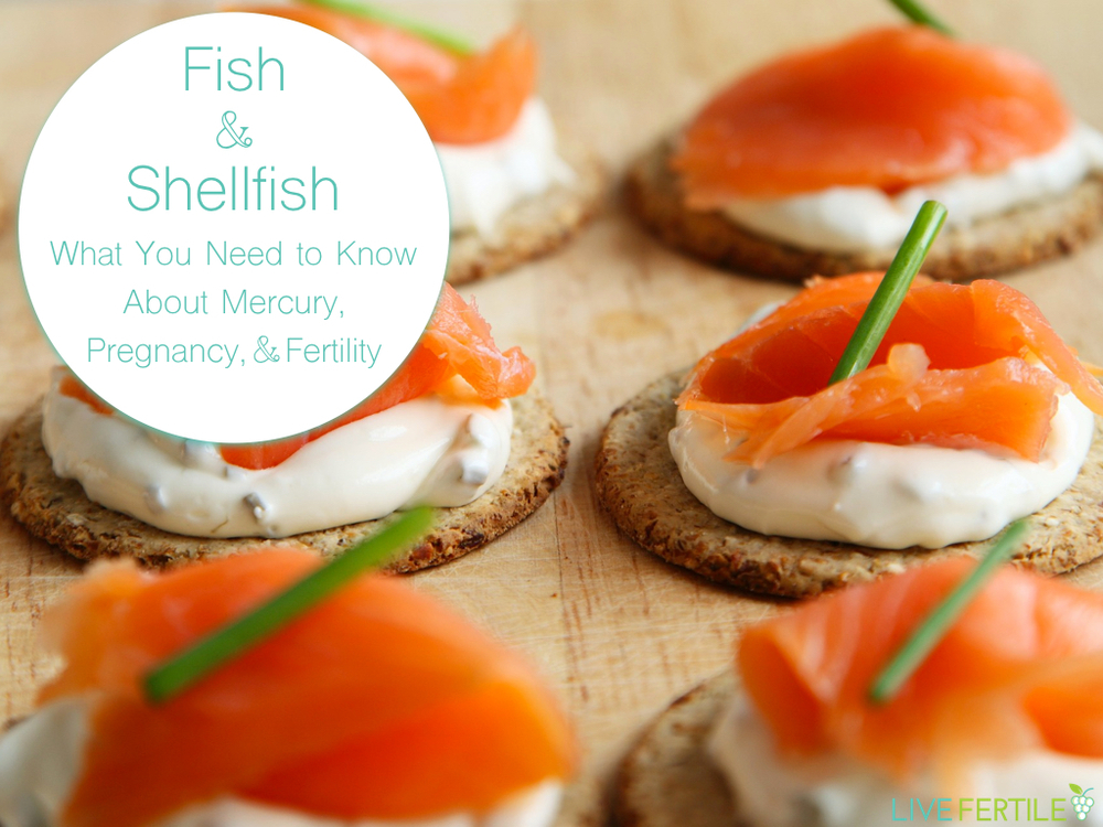mercury fish shellfish seafood pregnancy fertility diet