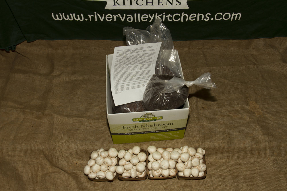 Your ready to grow kit should contain a large bag, a small bag (peat moss), and instructions.