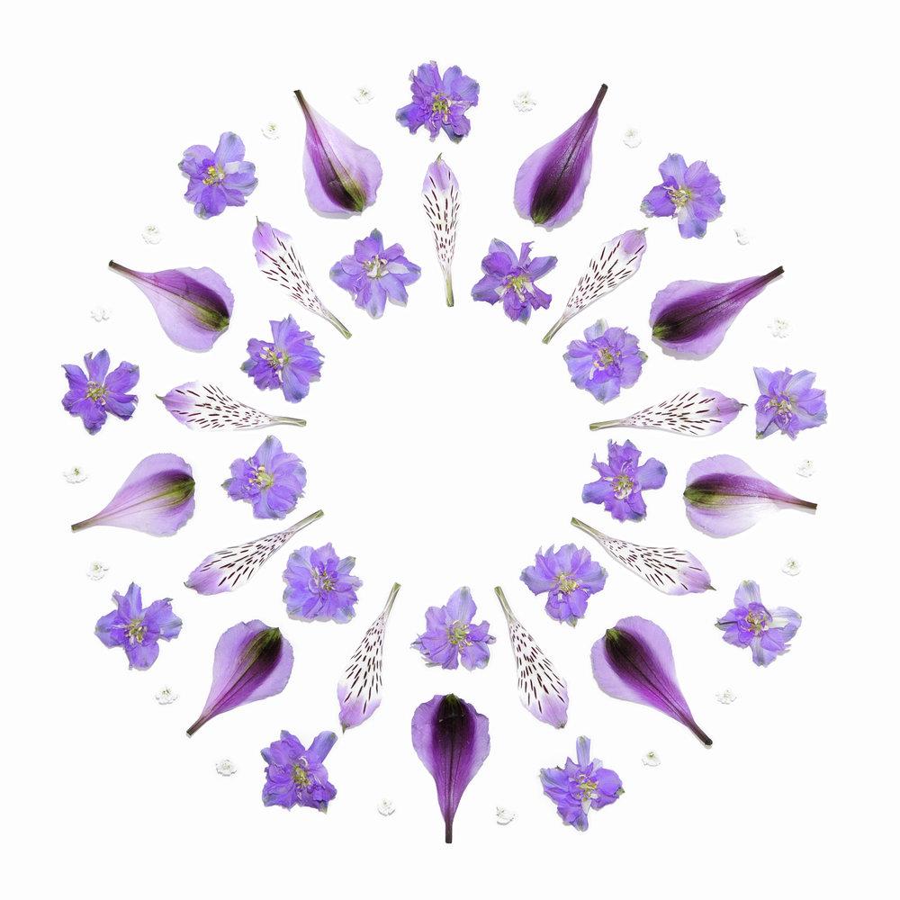 PurpleMandala.jpg