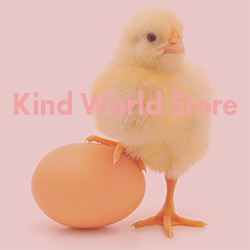 Kind World Store