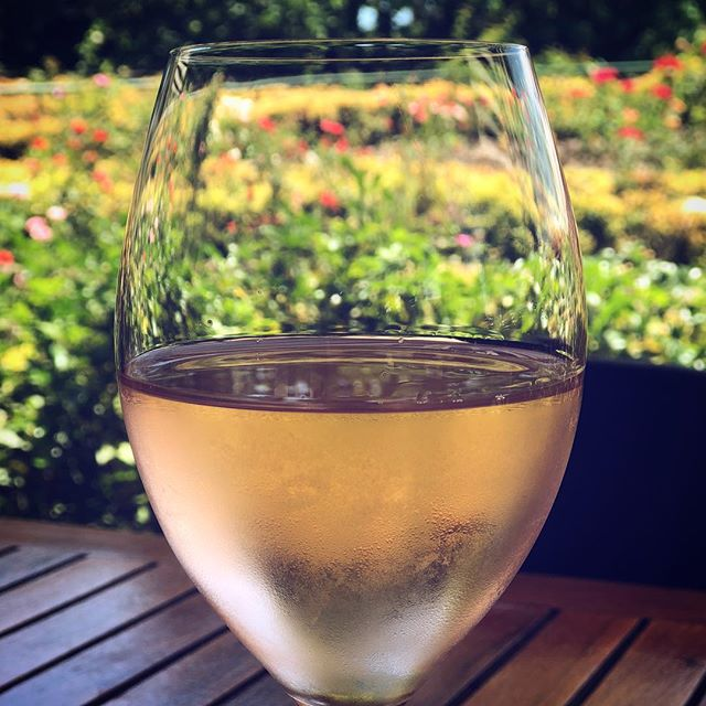 Smelling the roses through rosé coloured glasses. #seewhatwedidthere #winenot